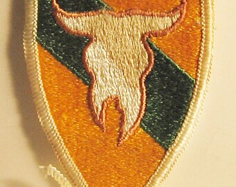 163rd Armored Cavalry Regiment Patch