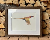 Pheasant Game Bird Framed Original Watercolor Painting Autumn Flight Hunting Wall hanging for him gameroom Art