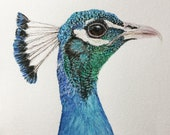 Penner Peacock, Original watercolor painting, Bird art, realistic painting, wall hanging, wildlife painting, peacock art