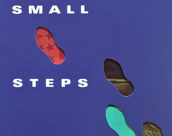 Small Steps by Louis Sachar - First Edition - Children's Books, Kids Books, Holes Book, Camp Green Lake, Armpit Johnson, Austin Texas