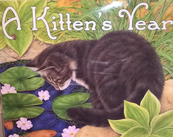 A Kitten's World by Nancy Raines Day, Anne Mortimer - First Edition Children's Books - Vintage Book, Picture Book, Cats Book
