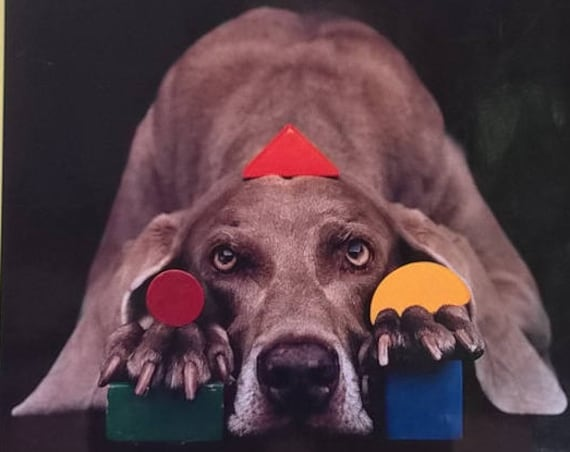 Wegmanology by William Wegman - First Edition Children's Books - Photography, ABC Books, Dogs, Weimaraners