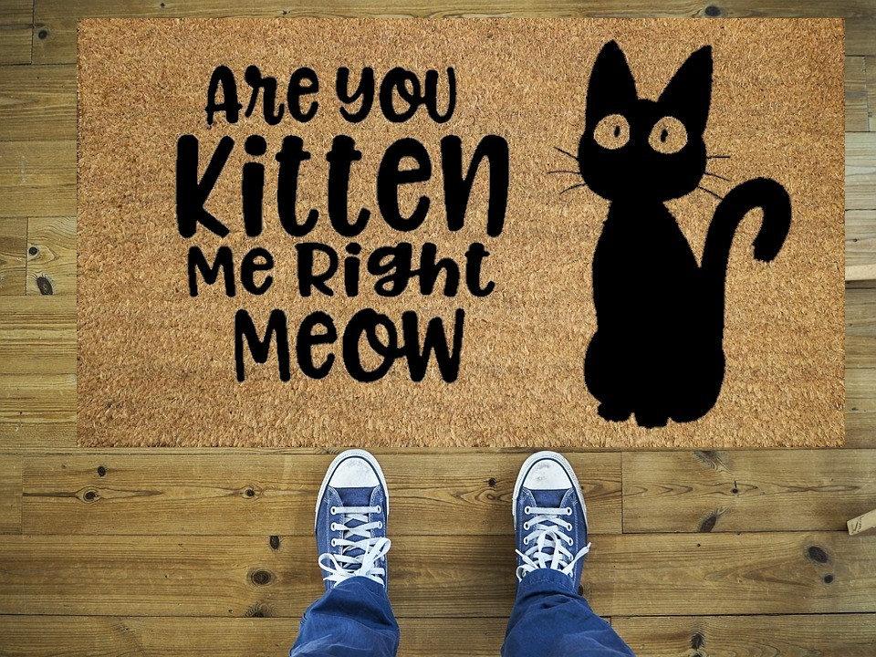 Sind Sie Ein Katzchen Die Mich Richtig Lustige Fussmatte Etsy