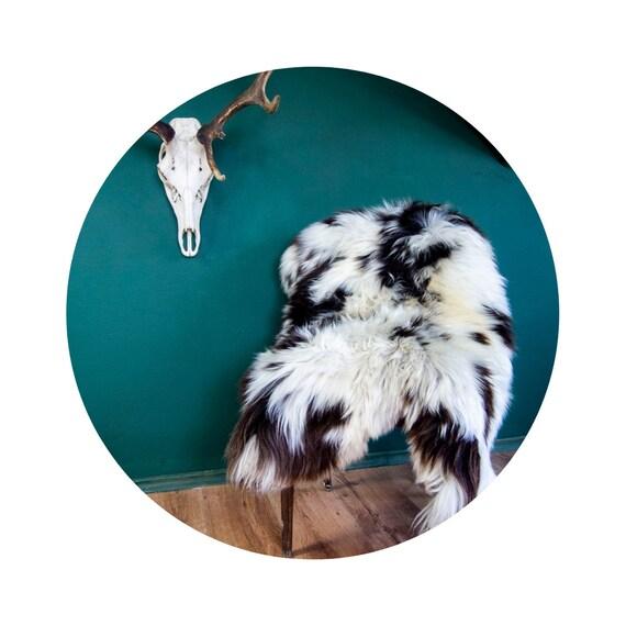 Natural Jacob Rare Breed Sheepskin Rug   HUGE 135cm