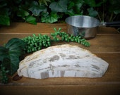 Petrified Wood Trivet With Stand, Stone Platter, Stone Trivet, Hot Plate, Indonesian Petrified Wood, t1