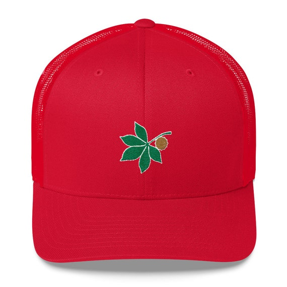 Ohio State Hat Dad Hat Embroidered Baseball Cap Embroidery Mens