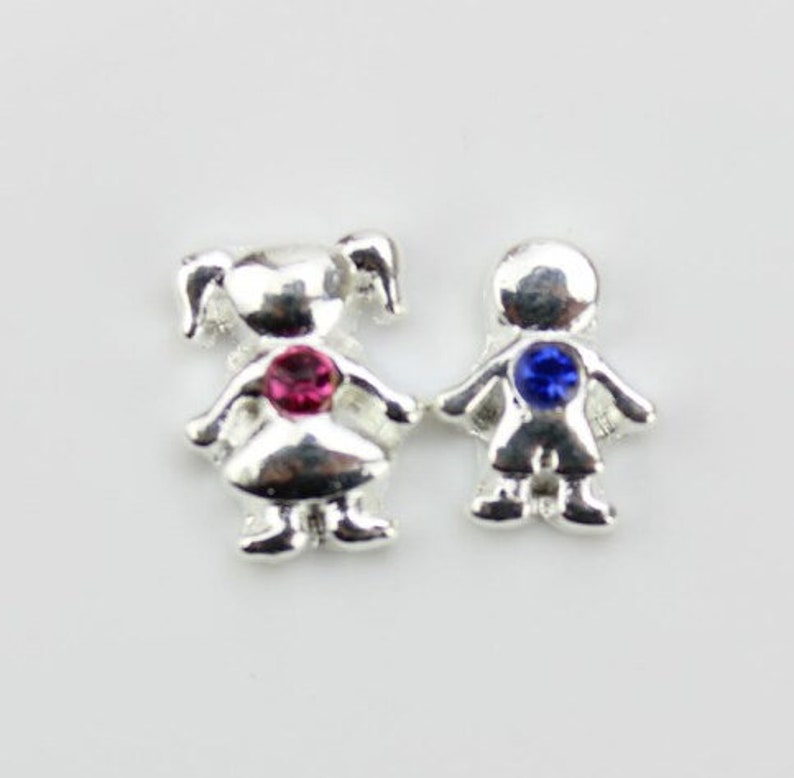 Birthstone Charms/Floating Charms/Birthstone/Floating image 0