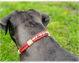 Tau dog collar with Charming