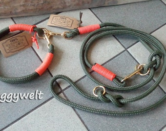 Tau Kombi-collar & leash