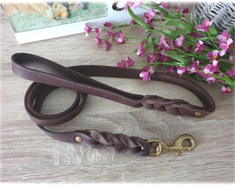 Leather leash with Braiding