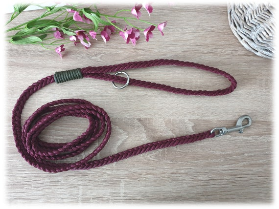 Tau dog leash with hand loop