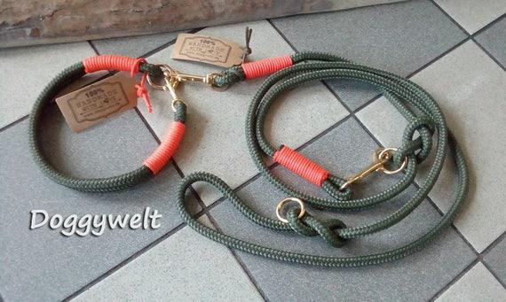 Kombi Tau dog leash & collar