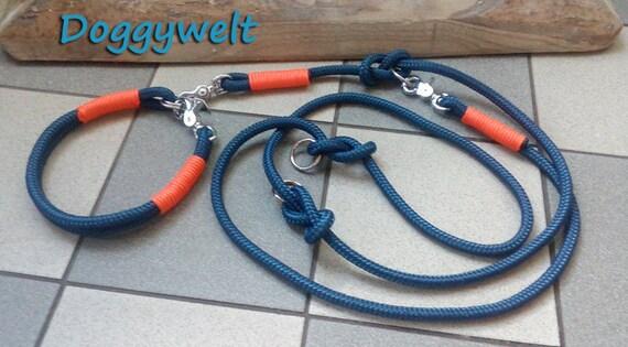 Tau Kombi-collar & leash