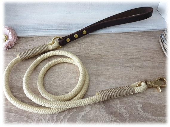 Dog leash tau with leather strap