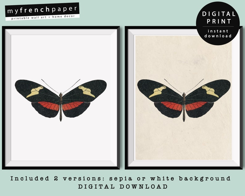 graphic regarding Printable Butterflies named Antique Butterfly Case in point Printable Butterflies Decor Instantaneous Obtain