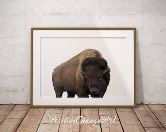 Buffalo Print, Buffalo Art Print, Bison Art, Bison Print, Buffalo Wall Art, Animal Photography, Modern Buffalo Print, Buffalo Printable