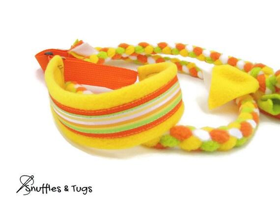 Rayure jaune orange blanche et vert anis chien agilité Grange chasse polaire tressé coulissant laisse remorqueur sports martingale collier