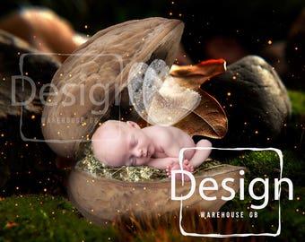 Newborn Photography Walnut Shell Bed Digital Backdrop Woodland Fairy Backdrop Forest Moss Walnut Newborn photography prop