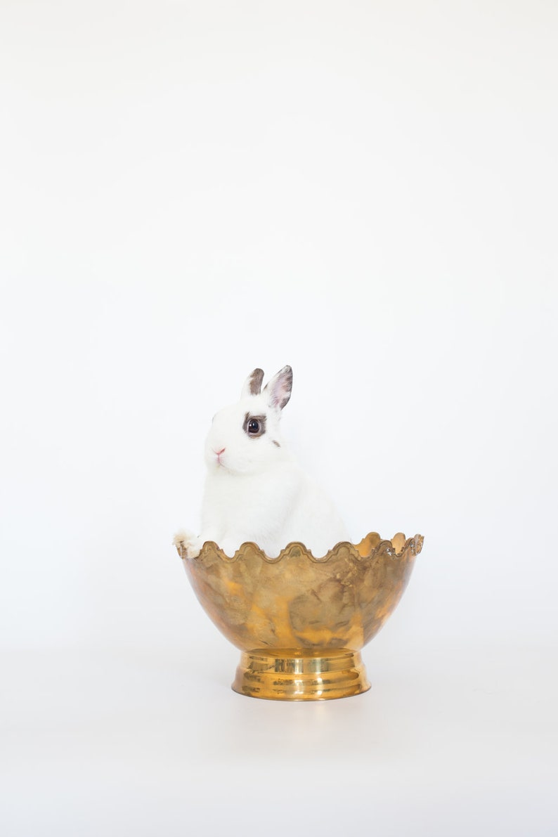 Scalloped Brass Bowl
