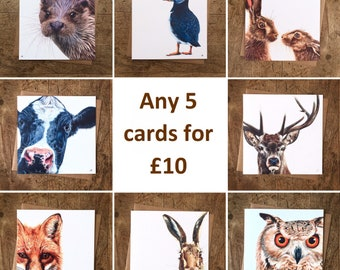 Animal Greetings Cards Mix and Match Multipack - Any 5 Cards - Animal Cards - Wildlife Cards - Blank Greetings Cards