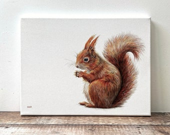 Red Squirrel - limited edition giclée canvas print; red squirrel painting - red squirrel print - british wildlife painting