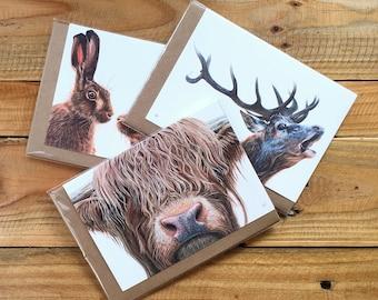 3 for 2 offer - 3 packs of 4 x A6 Notecards + envelopes