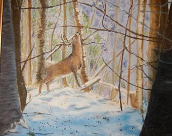 Deer in a clearing