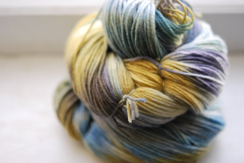 Hand Dyed Yarn  Stage Fright image 0