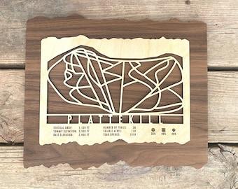 Plattekill Ski Decor Trail Map Art Gift Skiing Snowboarding Mountain Ski Art-Ski Skiing Gift Wall Art for Catskill Ski House