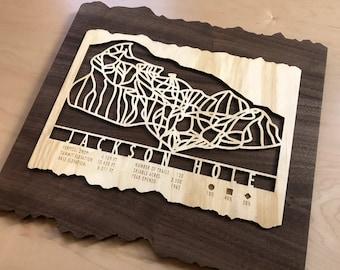 Jackson Hole Ski Map Art Gift for Skiers & Snowboarders - Jackson Hole Ski Art-Ski Decor - Skiing Wall Art for your Jackson Hole Ski House