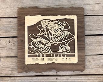 Sun Peaks Ski Map Art Gift for Skiers & Snowboarders - Ski Art-Ski Decor-Skiing Wall Art for your Ski House