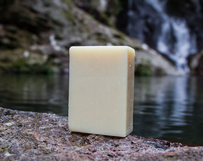 Shampoo & Shave Macadamia Oil Bar (unscented)