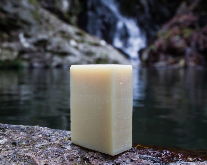 Macadamia Oil Bar (unscented)