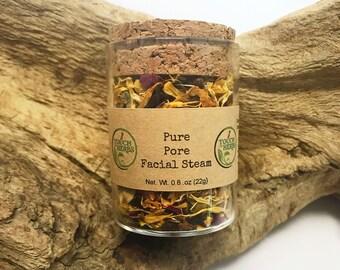 Pure Pore Facial Steam