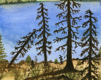 Original watercolor one of a kind 9x12 landscape mountain pine trees lake hand painted forest relaxing signed four tree branches winter