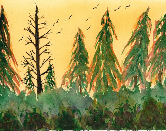 7x10 Sunset Watercolor Evening Orange Forest Tall Pine Trees Birds Green Bush one a kind hand painted not a print signed brilliant sky dusk