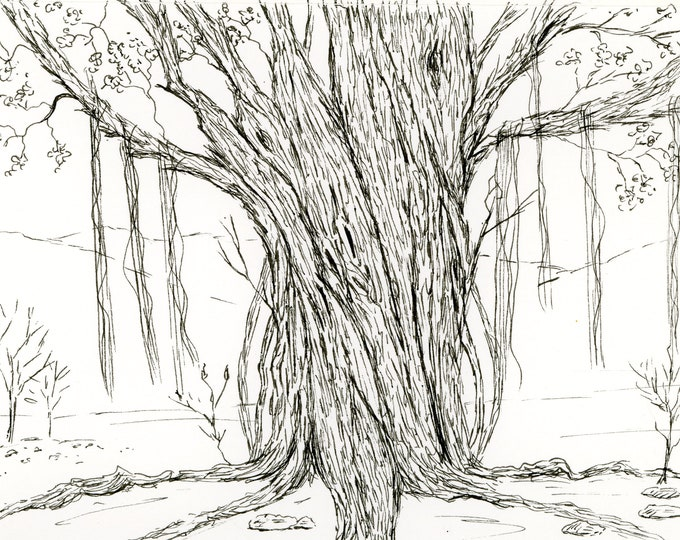 6x8 Original New Pen and Ink moss covered tree line drawing sketch black and white freehand one of a kind landscape hand drawn not a print