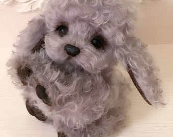 Fluffy Spaniel dog