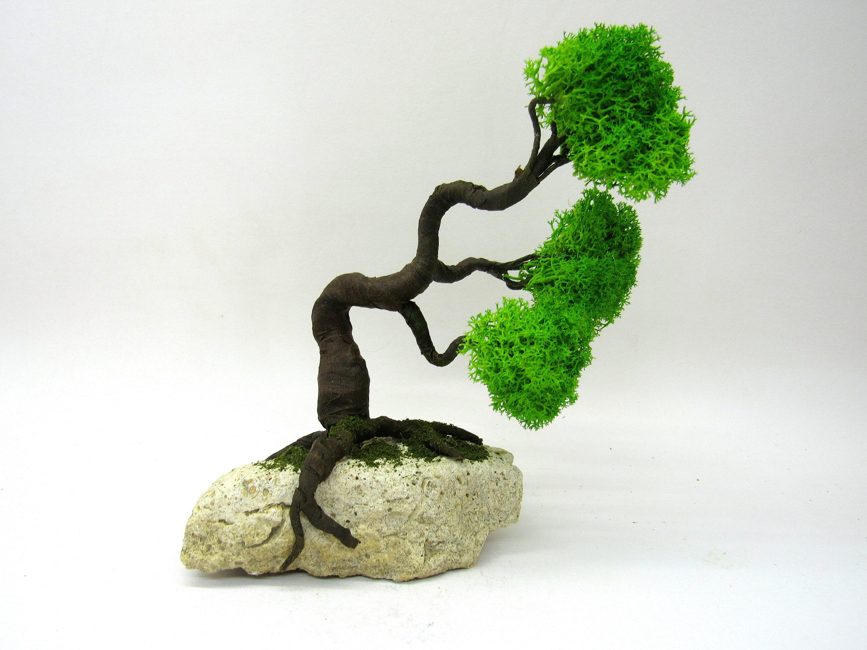 Luce artificiale per bonsai albero di plastica dei bonsai su un
