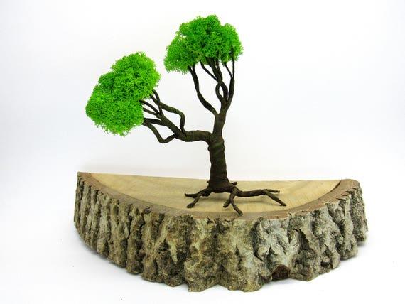 Bonsaï de fil cadeau sculpture arbre pour collègue intérieur Bureau ...