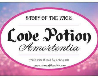 Pre Order - Love Potion Amortentia - Harry Potter Inspired Soy Candle