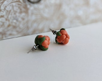 Handcrafted | Polymer Clay Jewelry | Bakeapple Studs