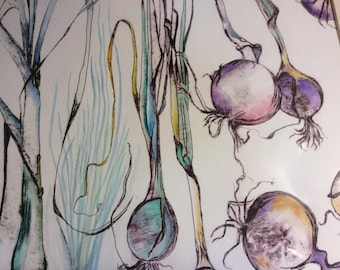 Onions etching and watercolour
