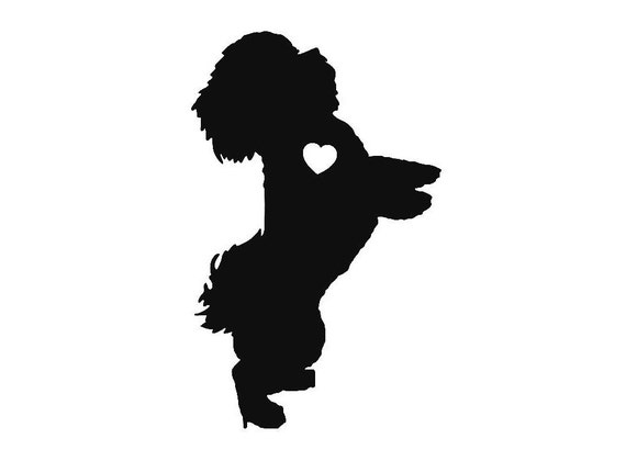 Havanese Vinyl Sticker