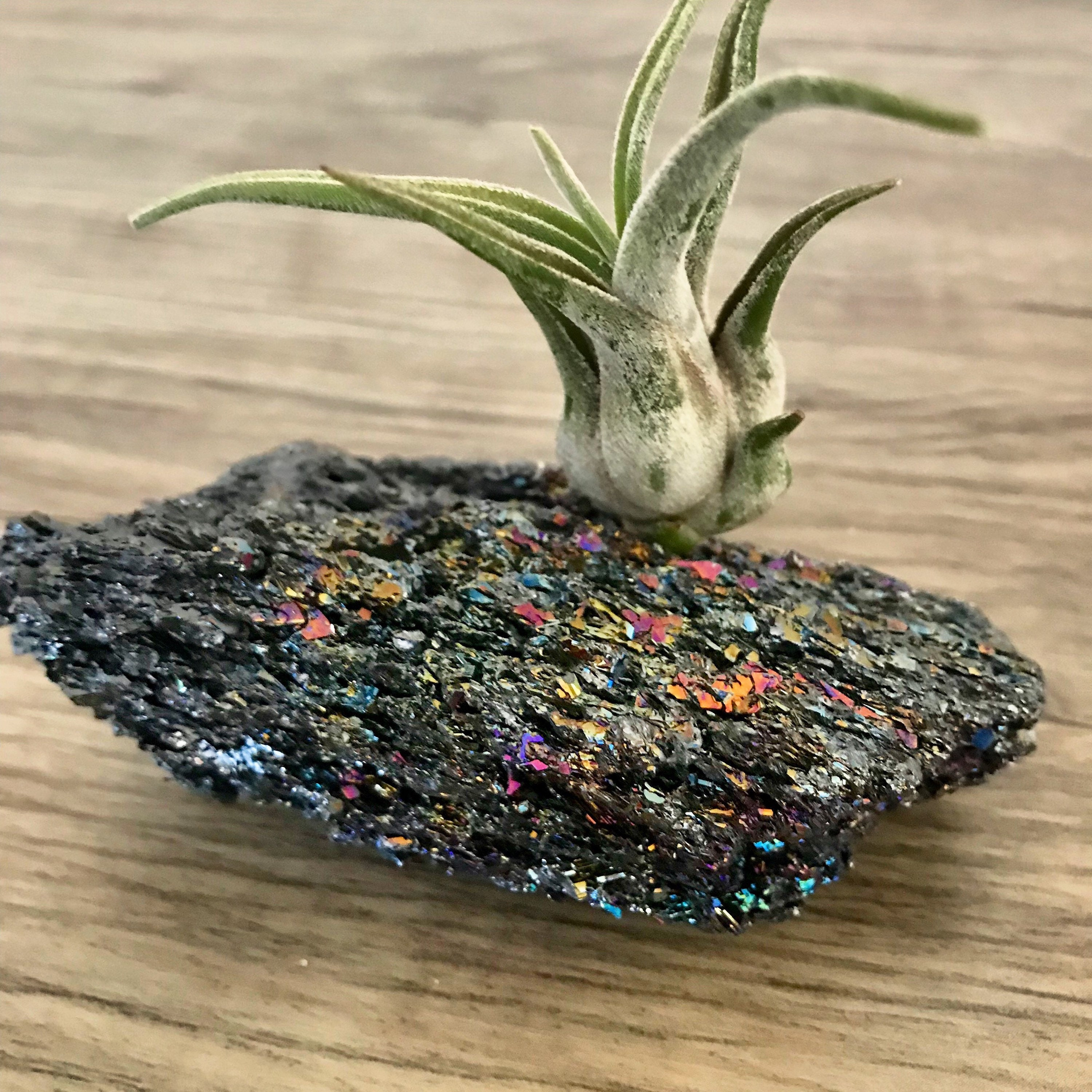 Huge Rainbow Ore Air Plant Crystal Garden Gifts Under 30 Healing Birthday Gift