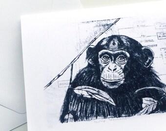Chimp Taxonomy Stationery