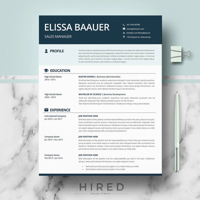 modern resume templates professional biodata format for word