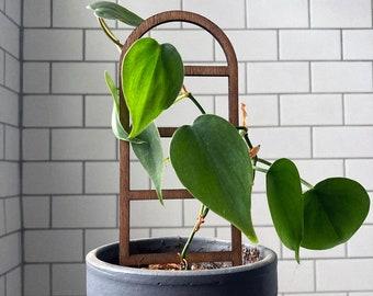 Houseplant Trellis   Wood   Plant Stake Support