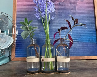 Propagation Station | Glass Vase | Propagation Vase | Glass Vase | Planter