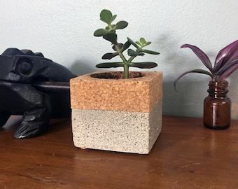 Concrete/cork planter
